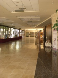 Commercial Cleaning with No Contract