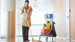 Building Cleaning Servicess